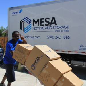 Mesa Moving Quality Count